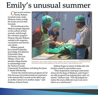 emilys-unusual-summer